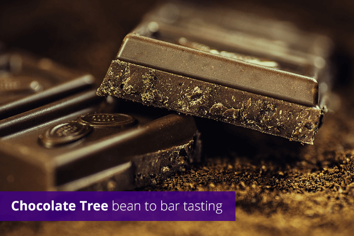 Chocolate tree bean to bar tasting