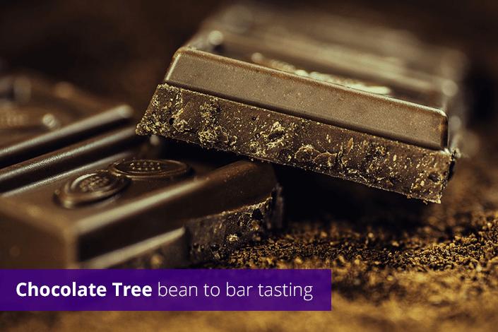 Chocolate tree bean to bar tasting