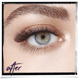 606869855ec Semi-Permanent Eyelash Extensions | Zen Lifestyle Edinburgh