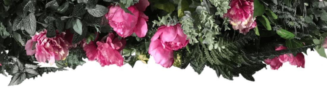 pink flower display withleaves